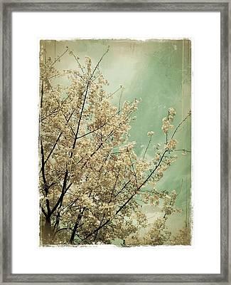 The Softness Of Spring Framed Print