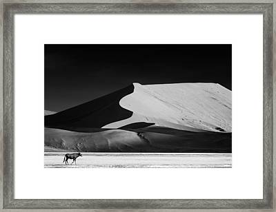 The Solitary Framed Print by Mathilde Guillemot