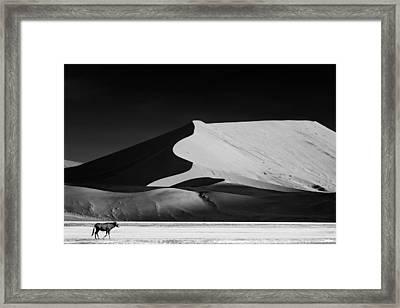 The Solitary Framed Print by Mathilde Guillemot