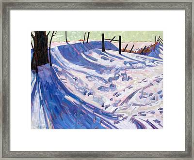 The Son Of A Wild Life Framed Print