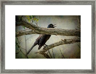 The Song Of Nature Framed Print
