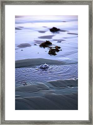 The Sound Of Bubbles Framed Print by Betsy Knapp