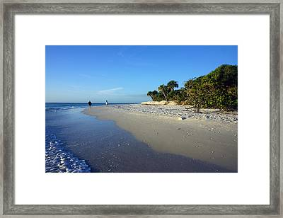 The South End Of Barefoot Beach In Naples, Fl Framed Print