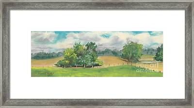 The South Field Framed Print by Terri  Meyer