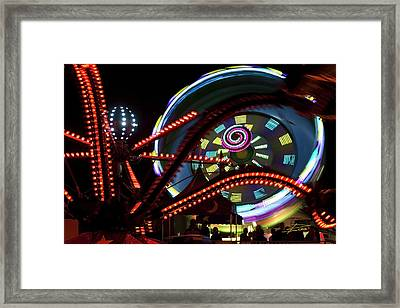 The Spider Trap Framed Print by Barbara  White
