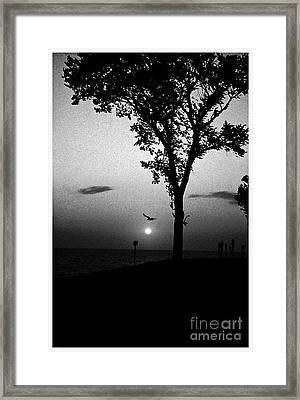 The Spirit Of Life Framed Print