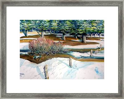 The Spring Thaw Framed Print