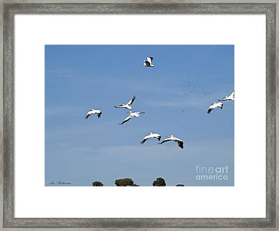 The Squadron Arrives 05 Framed Print by Arik Baltinester