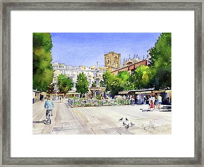 The Square In Summer Framed Print by Margaret Merry