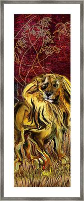 The Squinting Lion Framed Print by Anne Weirich