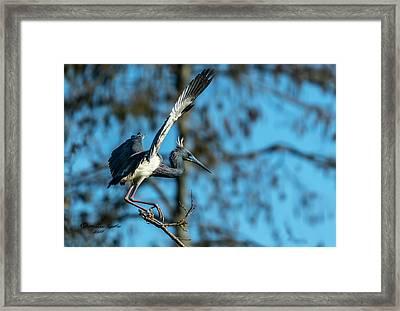 The Stage Entry Framed Print