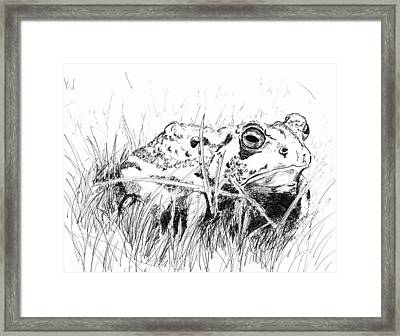 The Stalwart Old Toad Framed Print