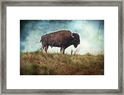 The Stance Framed Print by Tamyra Ayles
