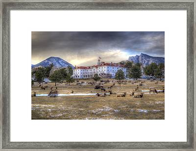 The Stanley With Elk Framed Print