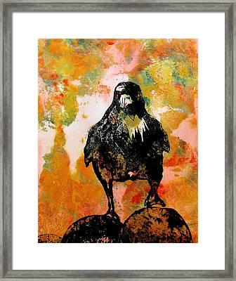 The Stillness Broken Framed Print by Sandy Applegate