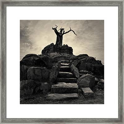 The Stone Steps II Toned Framed Print