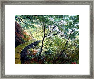 The Stone Wall Framed Print by Jim Gola
