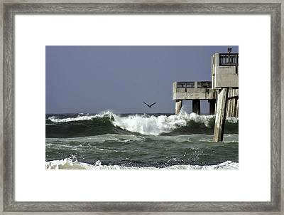 The Storm  Framed Print by Debra Forand