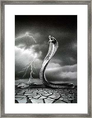 The Storm Is Coming... Framed Print by Miro Gradinscak