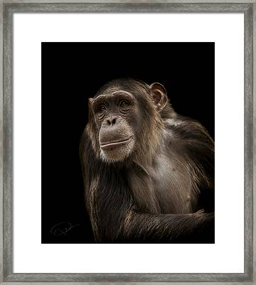 The Storyteller Framed Print by Paul Neville