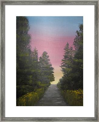The Straight And Narrow Path Framed Print by Terri Warner