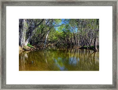 The Straight And Narrow Framed Print by Thomas  Todd