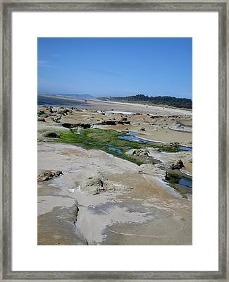 The Strange And The Beautiful Framed Print by Marie Neder