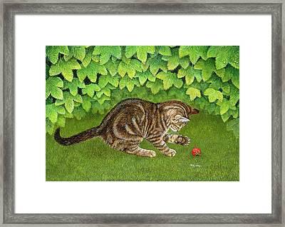 The Strawberry Kitten Framed Print by Ditz