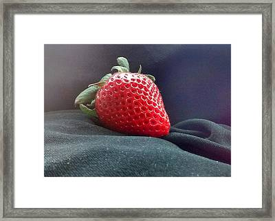The Strawberry Portrait Framed Print by Sylvester Wofford