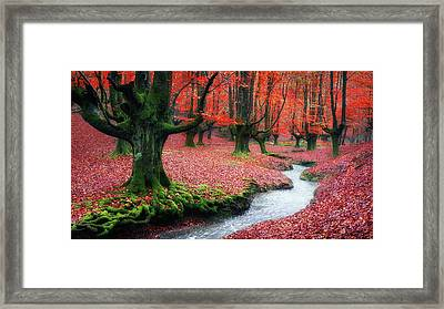 The Stream Of Life Framed Print by Mikel Martinez de Osaba