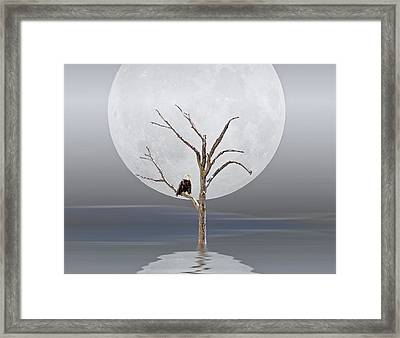 The Strong Survive Framed Print by Maria Dryfhout