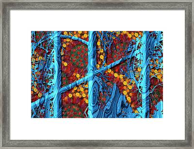 The Summer We Went To Blue Tree Framed Print