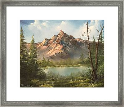 The Summit  Framed Print
