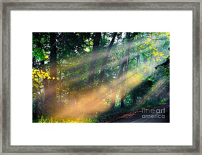 The Sun Beams Framed Print by Robert Pearson