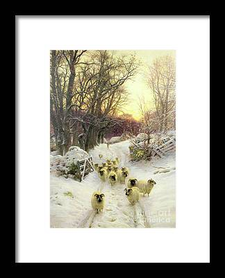 Winter Sunset Framed Prints