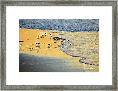 The Sun Is Shining And So Are You Framed Print