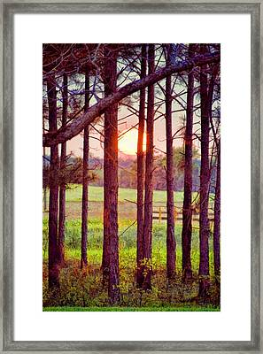 Framed Print featuring the photograph The Sun Pines Away by Jan Amiss Photography