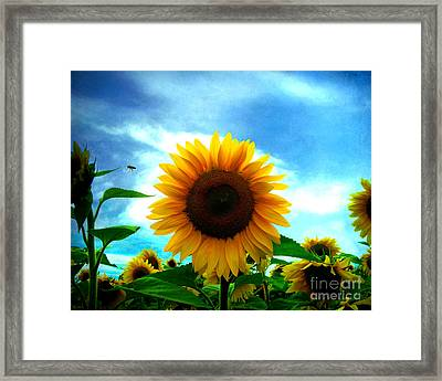 The Sun Will Come Out Tomorrow Framed Print