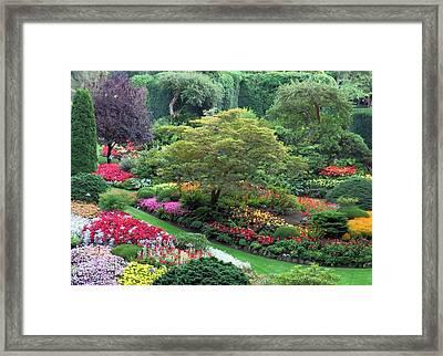 The Sunken Garden At Dusk Framed Print