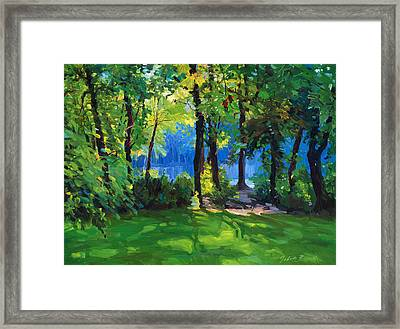 The Sunny Side Of A Pond Framed Print