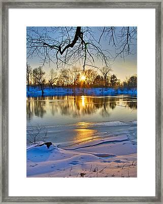 The Sunny Side Framed Print by Robert Pearson