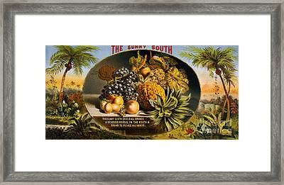 The Sunny South Vintage Fruit Label Framed Print by Edward Fielding