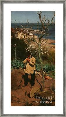 The Sunny South Framed Print by Walter Langley