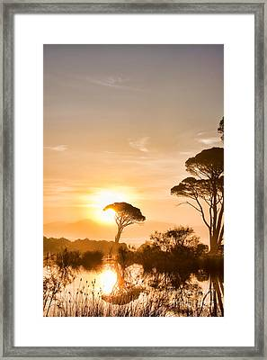 The Sunrise Framed Print by Gabriela Insuratelu