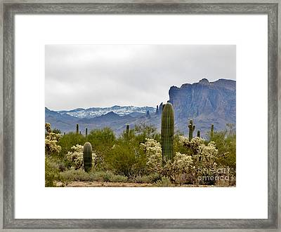 The Superstitions  Landscape Framed Print by Marilyn Smith