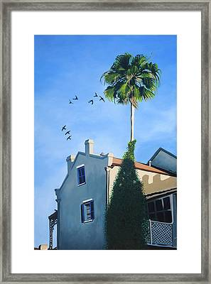 The Swallows Framed Print by Drew Enderlin