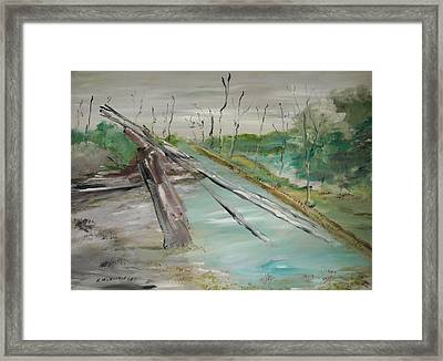The Swamp Framed Print by Edward Wolverton