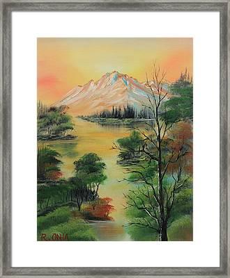 The Swamp 2 Framed Print