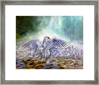 The Swan's Song Framed Print