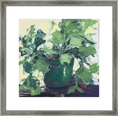 The Sweet Potato Plant Framed Print